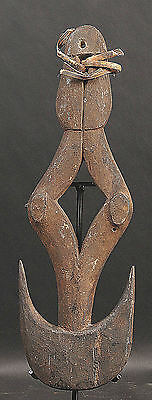 An Old Food Hook  From Papua New Guinea