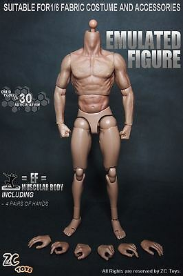 """ZC Toys 1:6 Scale Muscular Movable Body Figure For 12"""" Hot Toys Male Head Sculpt"""