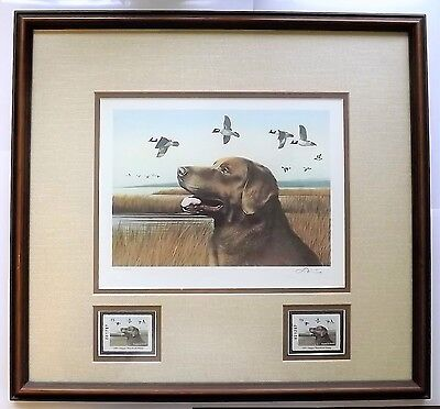 ​​Chesapeake Bay Retriever Dog Collector's 1991 Oregon Waterfowl Stamp Set