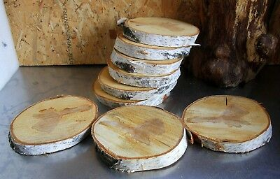 ONE Silver Birch 7''x8'' WOOD LOG BARK SLAB SLICE Wedding Coaster Rustic Decor