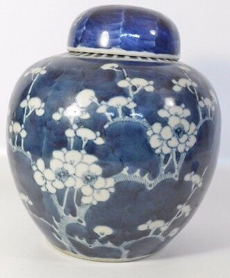 A perfect 19th century Chinese blue and white prunus ginger jar/vase Kangxi mark