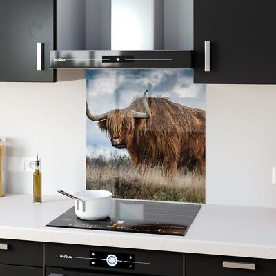 Kitchen Splashback Toughened Glass Heat Resistant Bull p144234 60x65cm