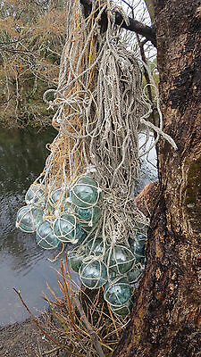 "Japanese Glass Fishing FLOATS 2"" Netted LOT-43 Net Bundle Cluster Hanging Yard"