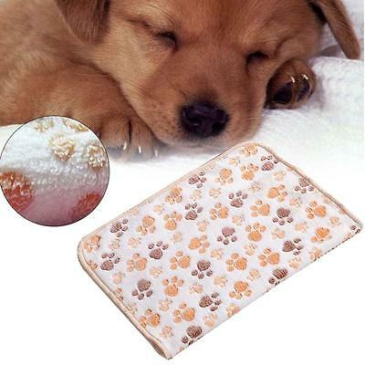 Removable Soft Puppy Dog Cat Pet Bed Cushion Blanket Mat Bask White 20 x 20cm EH