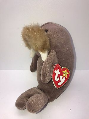 Ty Beanie Babies Jolly Plush Toy Walrus 1996 Nwt