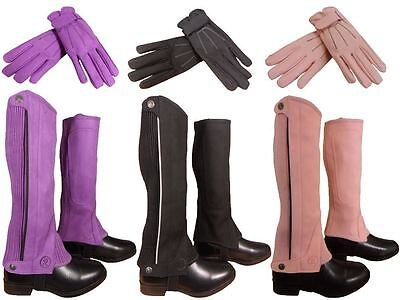 Riders Trend Ladies Mens Horse Stable Yard Amara Suede Half Chaps and Gloves Set