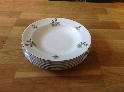 Maddock Royal Vitreous England 6 Rimmed Soup Bowls 22.5cm Thistle Pattern.