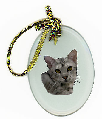 Ocicat Oval Glass Ornament Suncatcher Cat