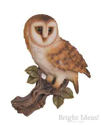 Vivid Arts - REAL LIFE BIRD WALL PLAQUE - Barn Owl