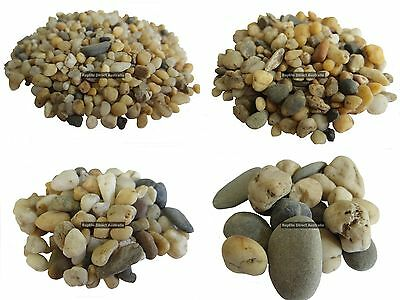 Gold Gravel 1.6, 3, 6, or 10mm in 2kg bags aquarium fish tank reptile garden