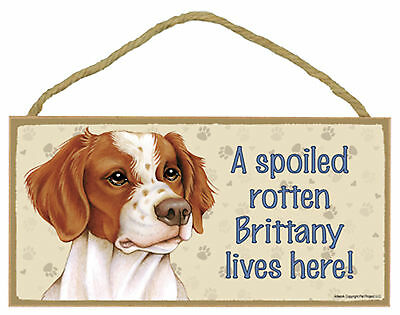 Brittany A spoiled rotten Brittany lives here! Wood Puppy Dog Sign USA Made NEW