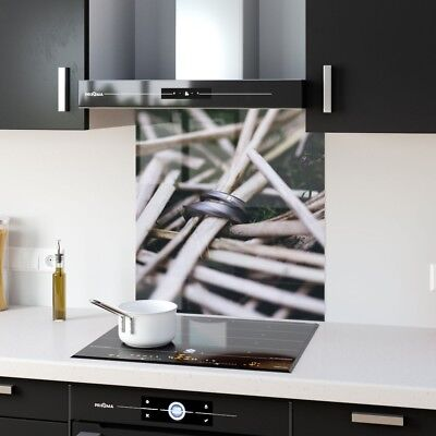 Kitchen Splashback Toughened Glass Heat Resistant Nature Ring p204996 60x65cm