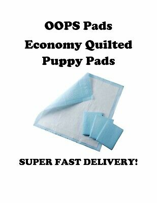 "300ct 23x36"" CHEAP Quilted Puppy Training Pee Pads 4-Ply Use 2x's Econo Quilted"