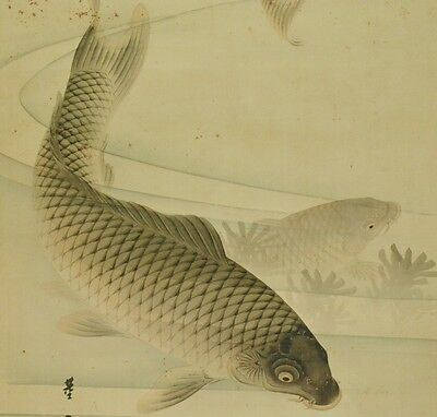 Hanging Scroll Japanese Painting Carp Ink Asian Antique Japan art Picture a861