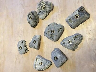 Climbing Holds. 9 bolt on. New.