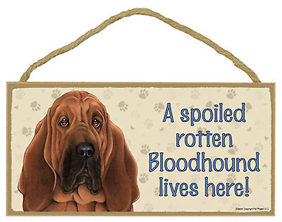 A spoiled rotten Bloodhound lives here! Wood Puppy Dog Sign Made in USA