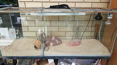 Lizard enclosure, glass with stand, for bearded dragon/water dragon
