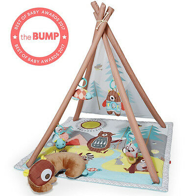 Skip Hop CAMPING CUBS BABY ACTIVITY GYM Brand New & Free Shipping