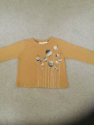 Zara baby girl mustard cotton long sleeve top with flower design age 12-18 month