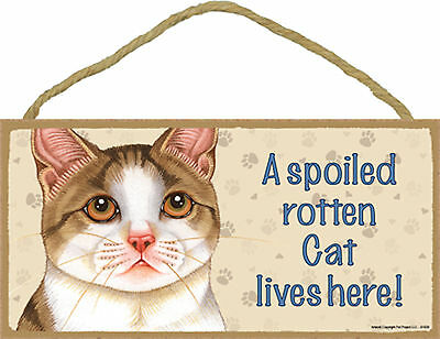 A spoiled rotten Cat lives here! Tan and White Kitten Cat Wood Sign Made in USA