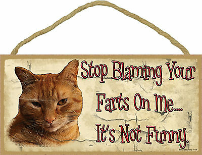 Stop Blaming Your Farts on Me It's not Funny Wood Orange Tabby Cat Sign USA Made