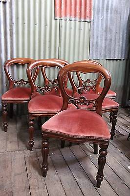 A Set of 6 Six Mahogany Balloon Back Dining Chairs