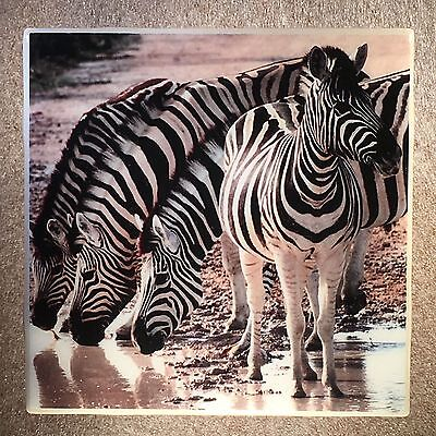 ZEBRA Tile Ceramic Coaster