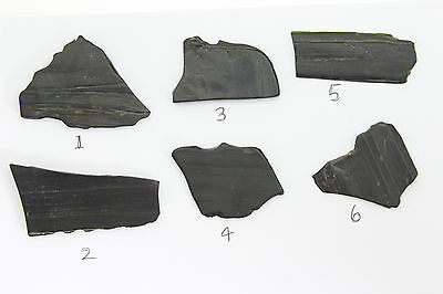 Whitby jet fossil specimen raw rough matt polished with wood impressions (2)