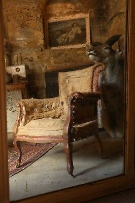 19th century French scroll back armchair, upholstery project
