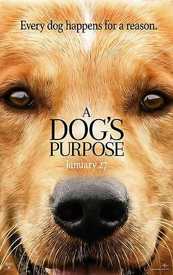 "8963 Hot Movie TV Shows - A Dogs Purpose 2017 1 14""x22"" Poster"
