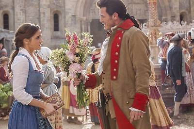 """9041 Hot Movie TV Shows - Beauty and the Beast 2017 24 21""""x14"""" Poster"""
