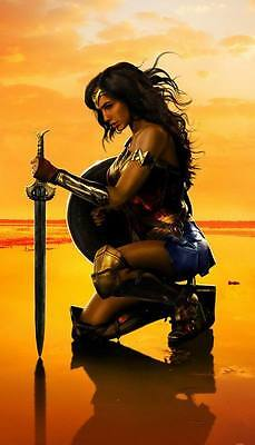 "10531 Hot Movie TV Shows - Wonder Woman 2017 7 14""x24"" Poster"