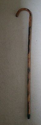 Vintage Bamboo walking stick with slim grip hook