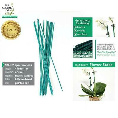 "45cm (18"") Flower Stakes 