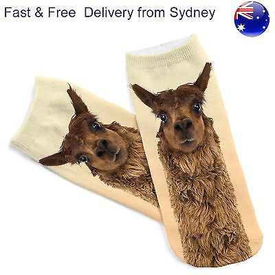 Alpaca socks - Weird animal look footware - Fast & Free delivery from Sydney