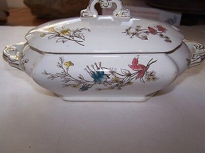 Antique Brownfield & Son Floral Tureen 1880's Stafford-shire ware