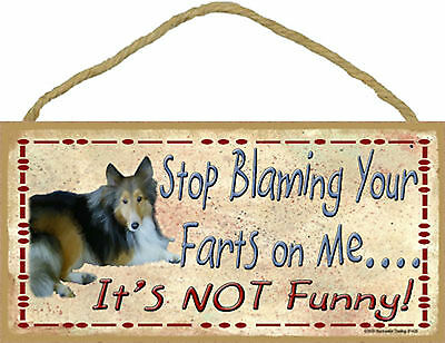 Sheltie Stop Blaming Your Farts on Me It's not Funny Wood Shetland Dog Sign USA