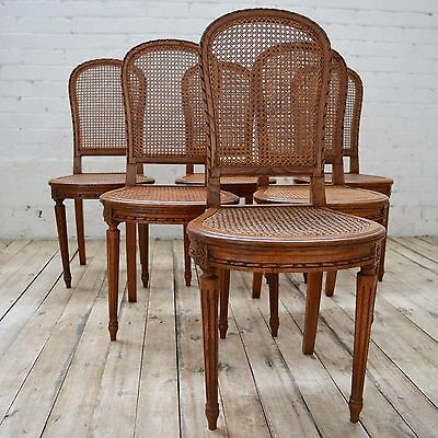 6 French Bergère Antique Walnut Decorative Cane seated dining chairs