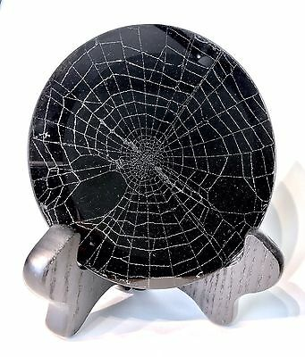Real Spider Web Preserved In Glass Decor Goth Victorian Ooak Art Taxidermy