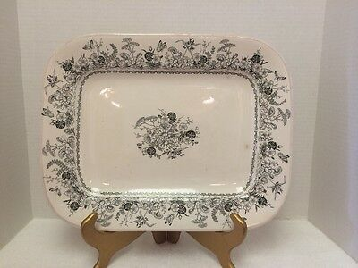 Large Sylvan Ironstone Platter With Floral And Butterfly Transferware Pattern