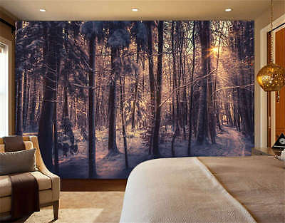 Winter Forest Sunlight Full Wall Mural Photo Wallpaper Print Kids Home 3D Decal