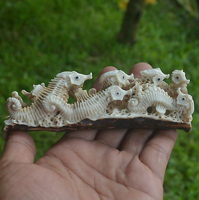 Sea Horse Group Carving 119mm Length T223 in Antler Carved