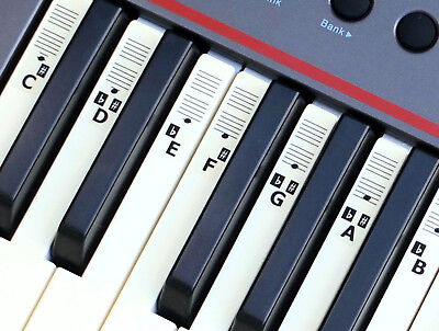 Piano Stickers for 49,54,61-KEY Music Keyboard KEYNOTES Labels + Online Lessons