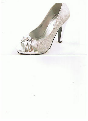 shoe  new in box  silver  any  occasion  price is right.