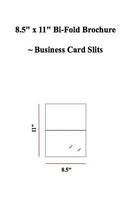 "8.5"" x 11"" Bi-Fold Brochure WITH business Card Slits (Sets of 50)"