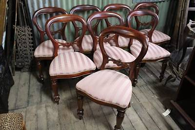 A Set of 8 Eight Mahogany Balloon Back Chairs