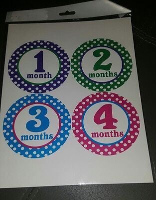 Monthly Milestone Stickers Baby Girl 1-12 months