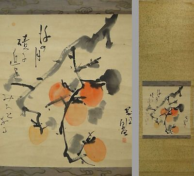 YK522 KAKEJIKU Plant Hanging Scroll Japanese Art painting Nihonga Picture