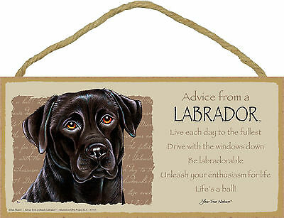 Advice from a Labrador Inspirational Wood Black Lab Nature Dog Sign Made in USA