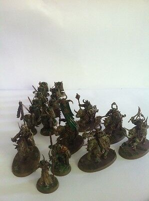 Warhammer Fantasy Age Of Sigmar Nurgle Chaos Daemons Army High Level Paint Work
